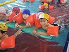 夏のプール教室